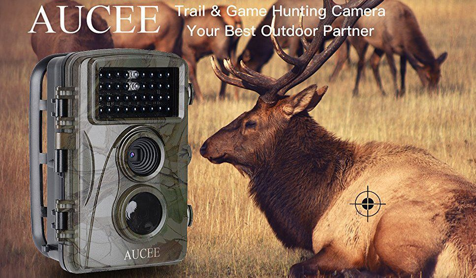 Aucee Hunting Camera
