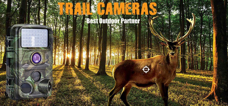 ENKEEO PH730S Trail Cam Review