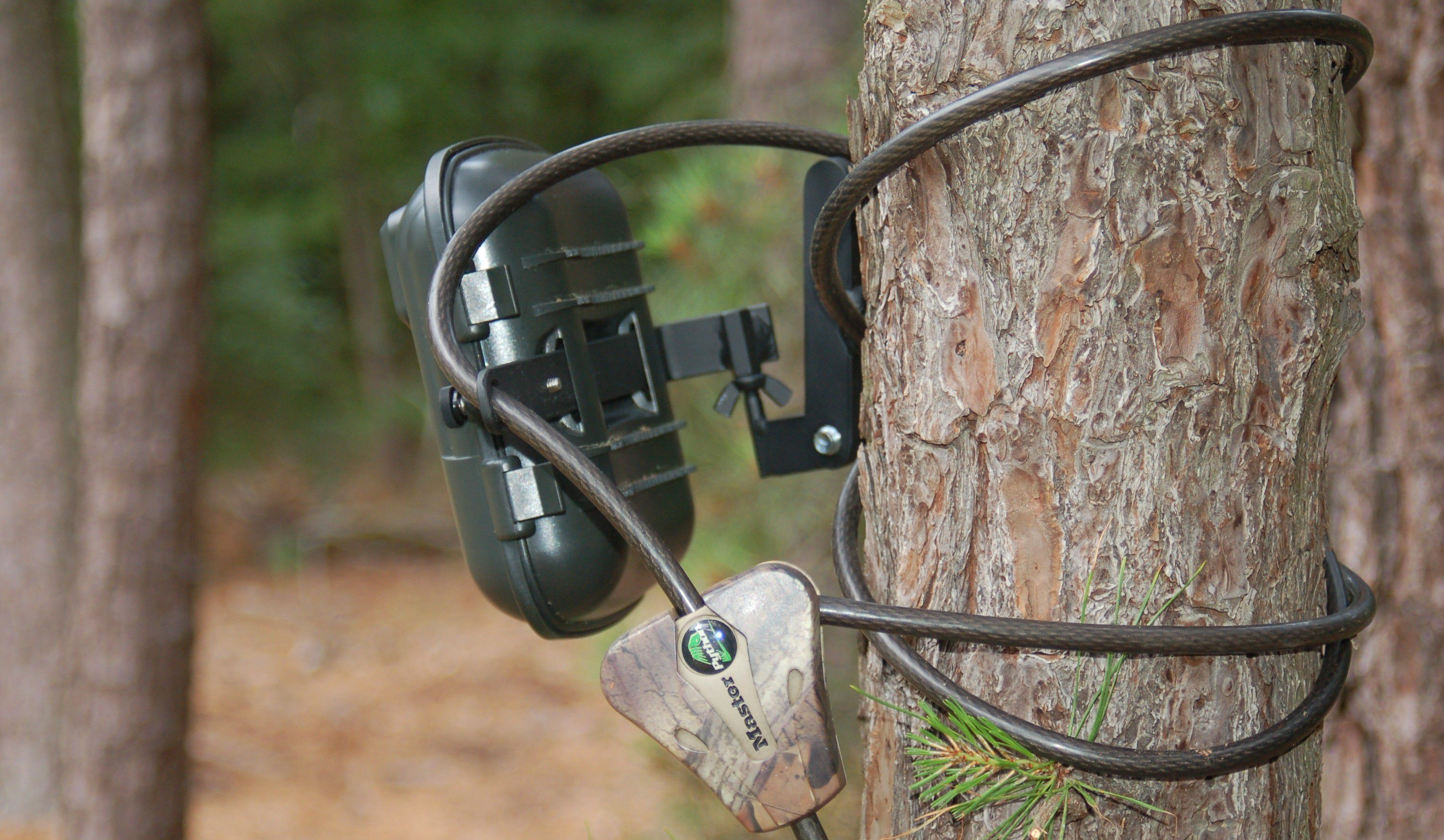 How To Use The Trail Camera