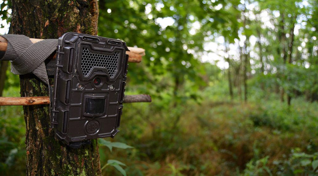 Why Do We Need A Trail Camera