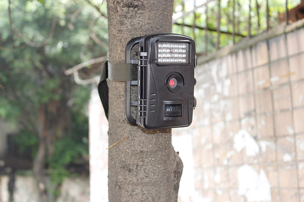 Best Trail Camera Accessories