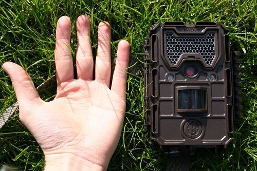 Bushnell Trophy Essential E2 Trail Camera Review