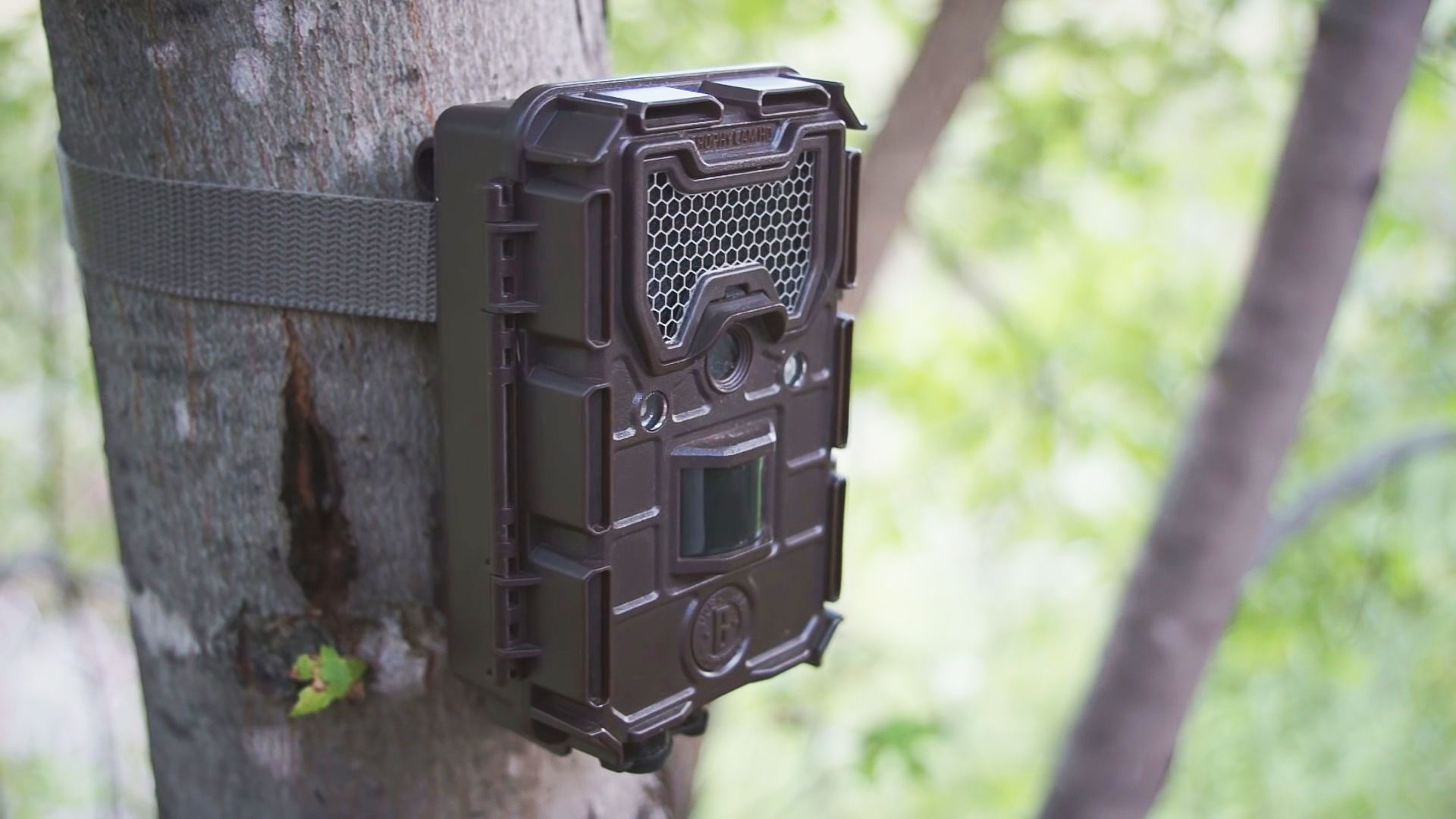 Bushnell Trophy Essential E2 12 MP Trail Camera Review