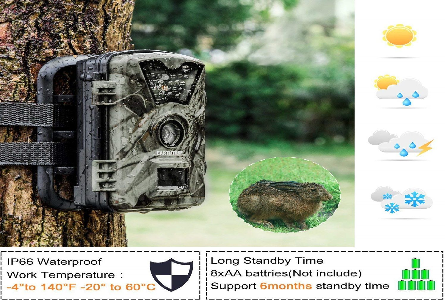 Earthtree Trail Camera Review
