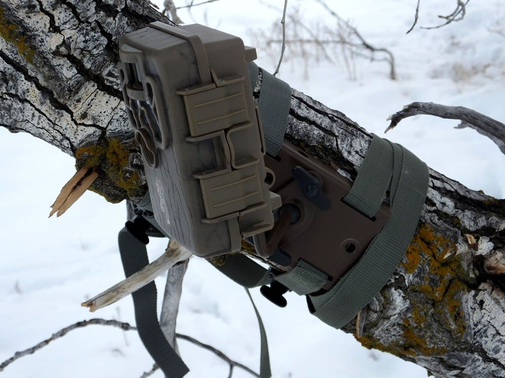 Trail Camera Mount Strap