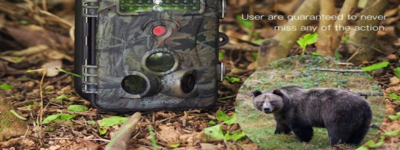 Best Apeman Trail Camera