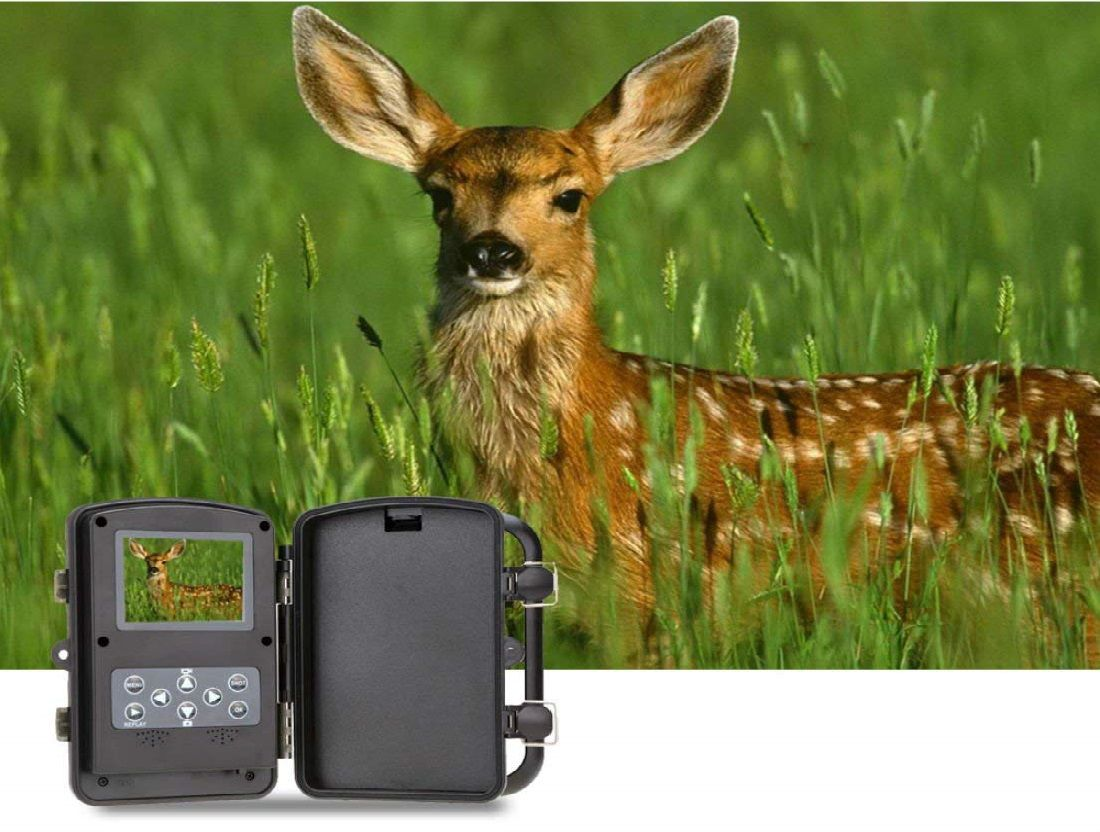 Smarssen Trail Hunting Camera Review