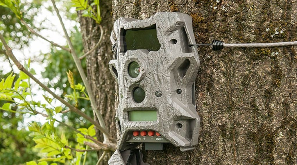 Wildgame Innovations Cloak Pro Trail Camera Review
