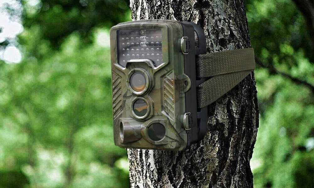 Different Types Of Game Camera