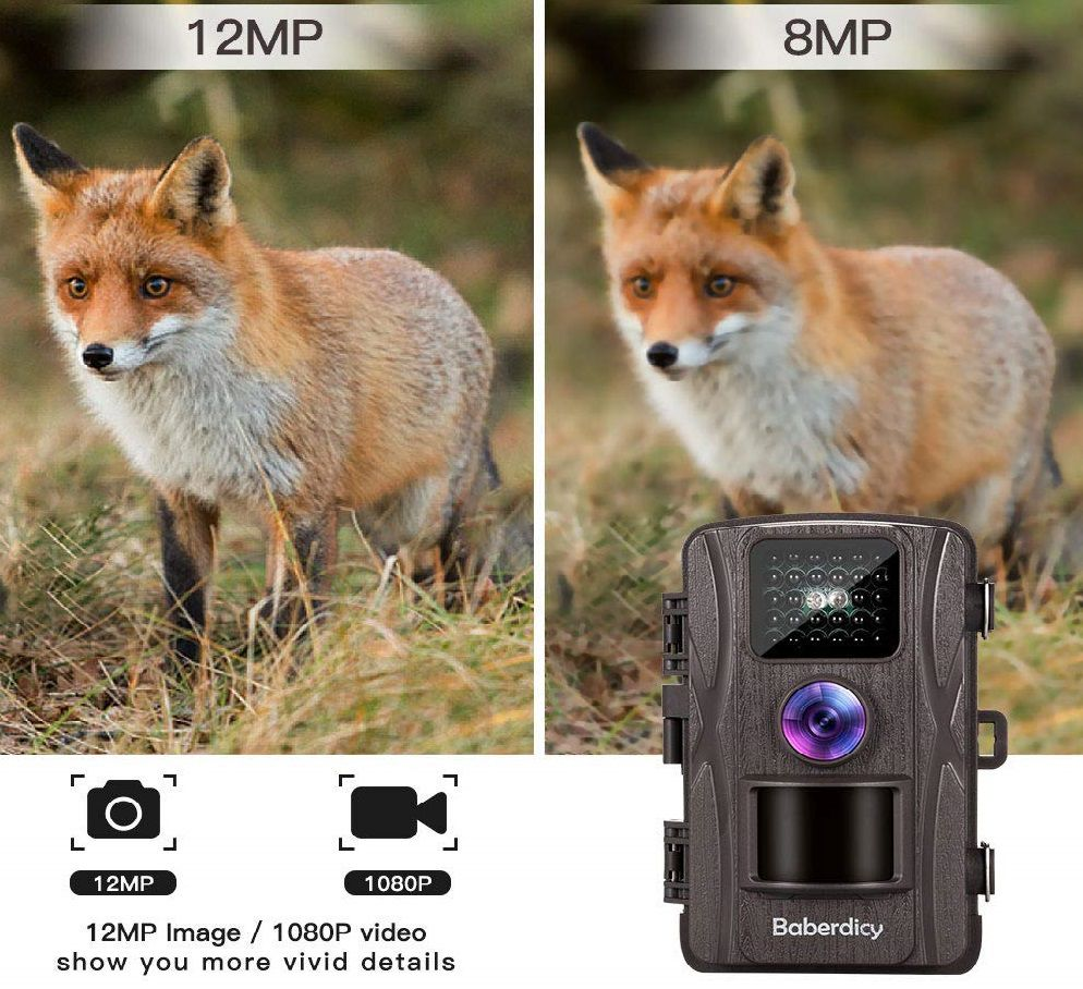 Baberdicy 12MP Wildlife Trail Camera Review