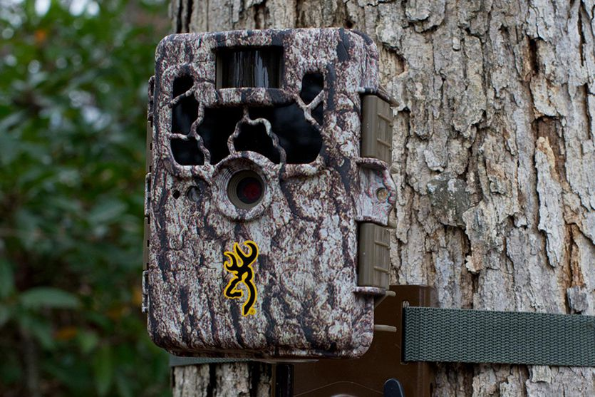 Security Options With Trail Camera