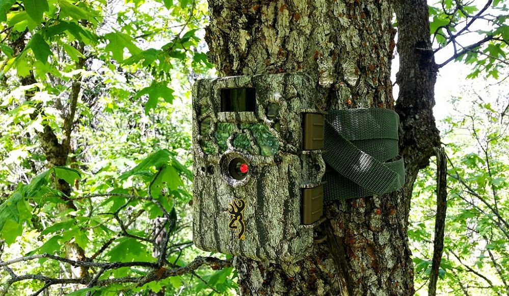Best Trail Camera Uses