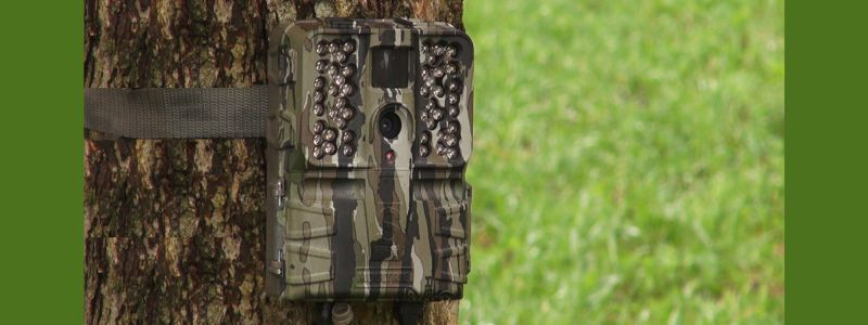 how many scouting trail cameras are needed