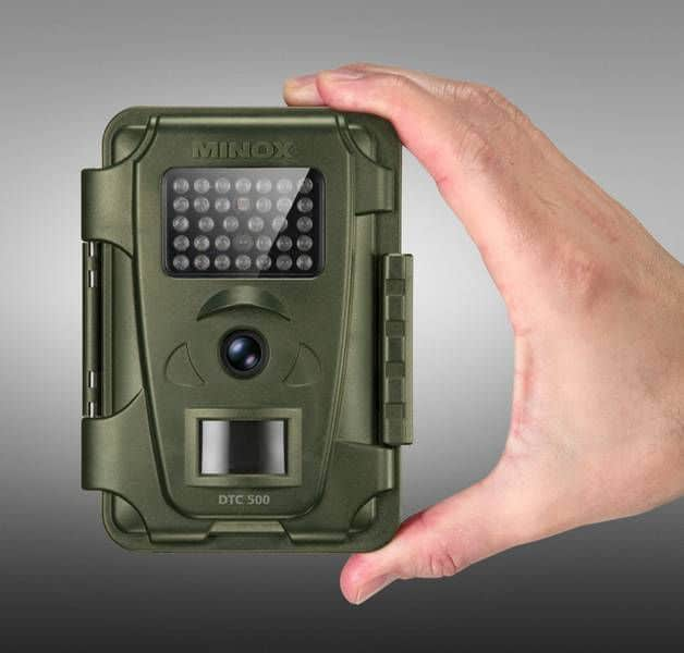 Wildlife Hunting Cameras For Wildlife Photography