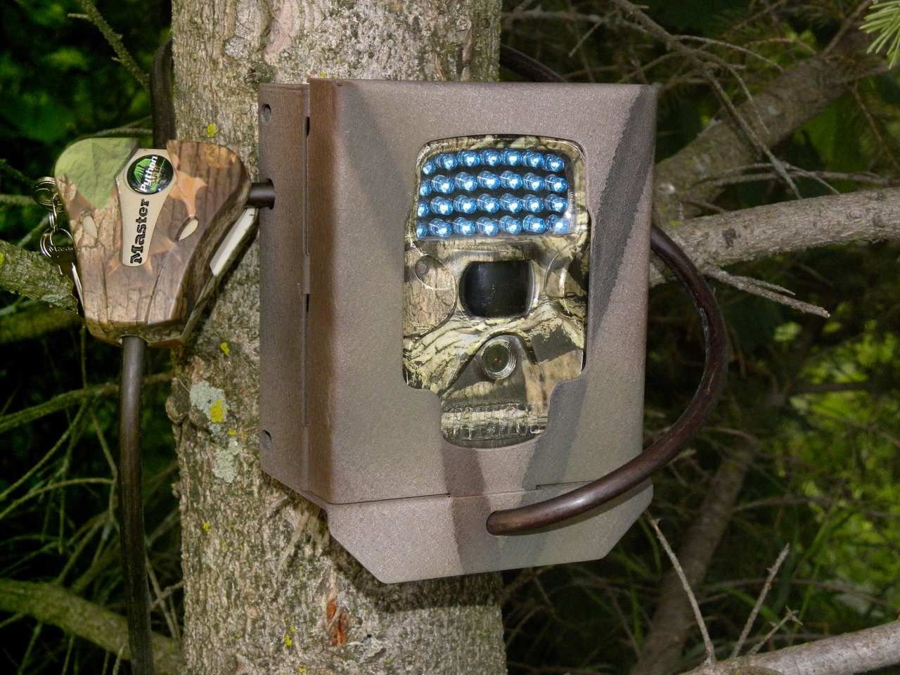 Digital trail camera for money